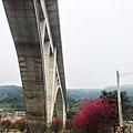 2014.2.14 騎車北上 鯉魚潭拱橋