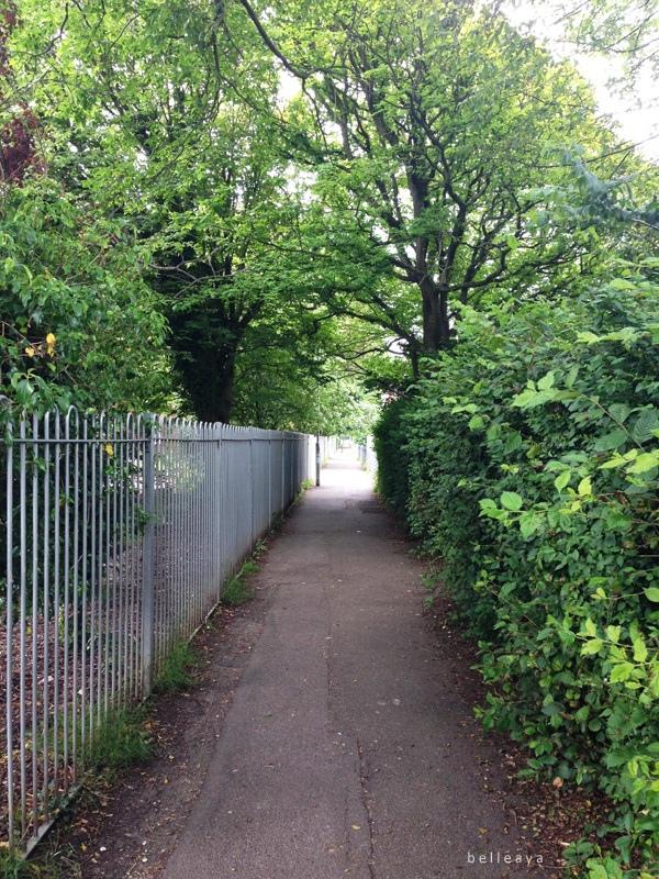 [英國] Devil%5Cs Dyke (上):Dyke Road