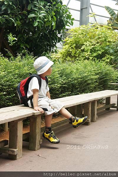 20110605-9_沖繩五日遊 361.JPG