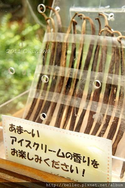 20110605-9_沖繩五日遊 362.JPG