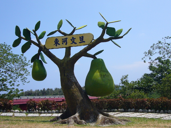 路旁可愛的大柚子模型