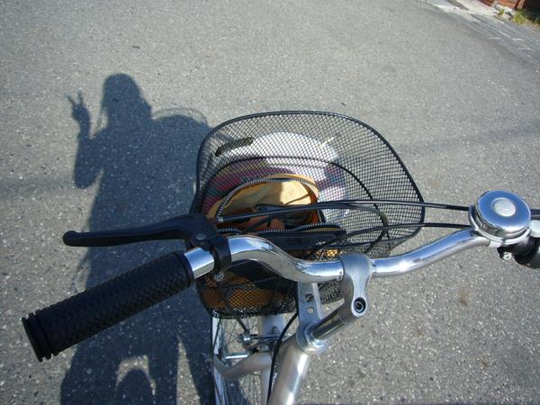 騎腳踏車逛園區