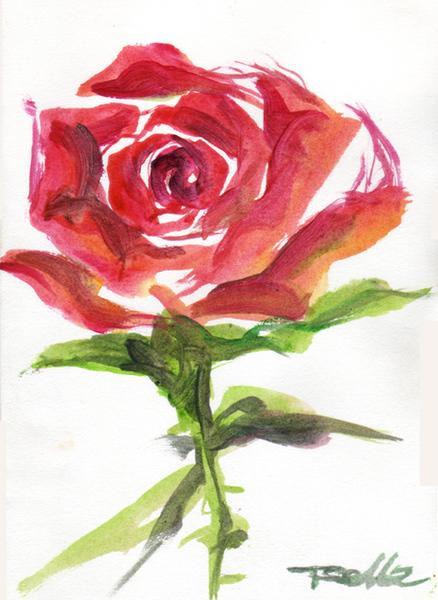 20070818-玫瑰.jpg