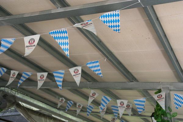 二樓天花板的Fu
