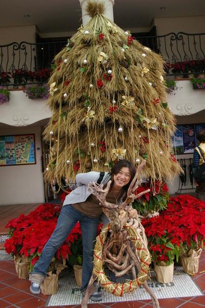 聖誕樹拍拍