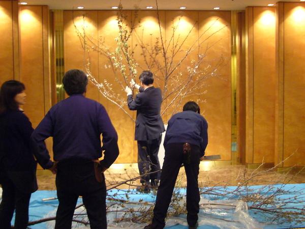 飯店大廳直接用櫻花樹當造景