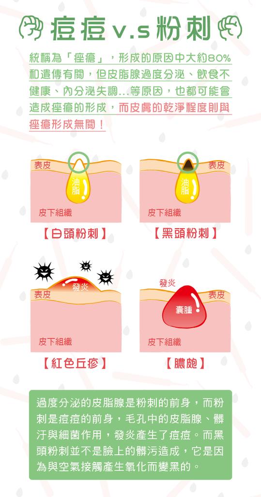 1050728-弧型粉刺夾-網路用介紹圖-01-03.png
