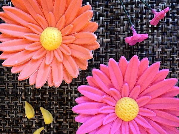 Wilton Advanced Gum Paste Flowers Course IV.I 蛋糕裝飾課