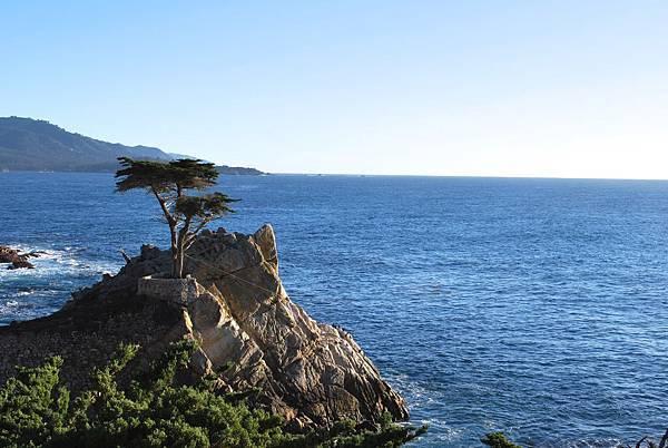 我在十七哩蔚藍海岸旁,聽海高歌 17-Mile Drive