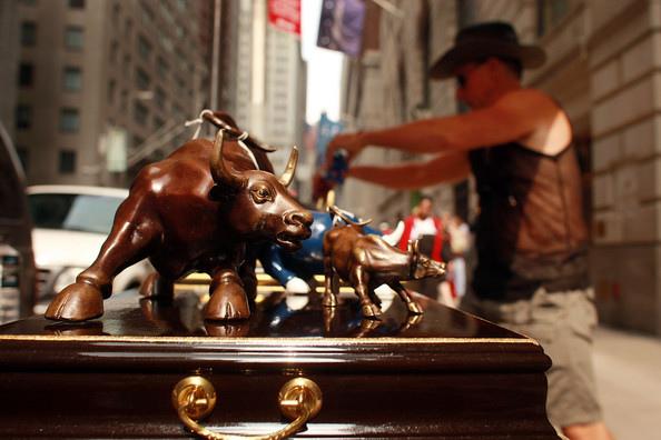 bulls.bmp