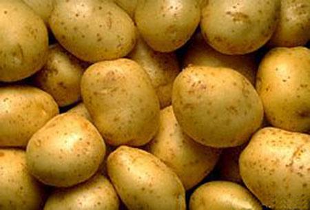 馬鈴薯.bmp