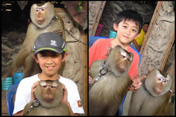 dj-猴子.jpg