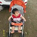 SAM_0229