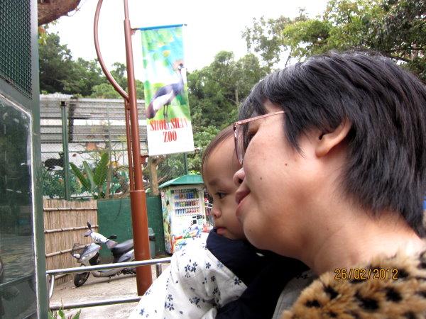 0226和媽咪一起觀察鴕鳥