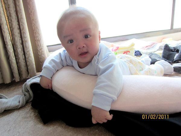 0201為什麼我要趴在抱枕上?媽咪這次換新招了耶!