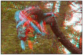 old 3D images.jpg