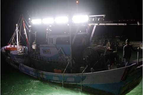 創新LED集魚燈 每年為漁民省逾6億