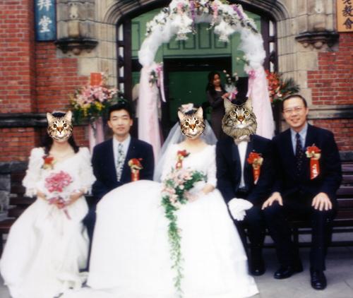 新郎新娘伴郎伴娘與司會拍照囉