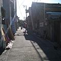 方草碧蓮天~街景