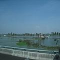 8.8水災賑災at林邊~魚塭裡的魚都死了...
