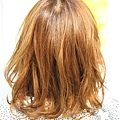 【COLOR】閃亮的金色質感中長捲髮迷人風格髮型A-3