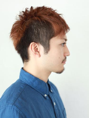 【首選髮型】光亮度髮型A-2
