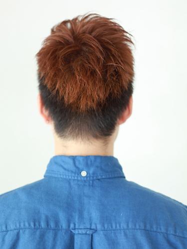 【首選髮型】光亮度髮型A-3