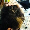 頭頂的頭毛往後拉,一樣風吹頭皮