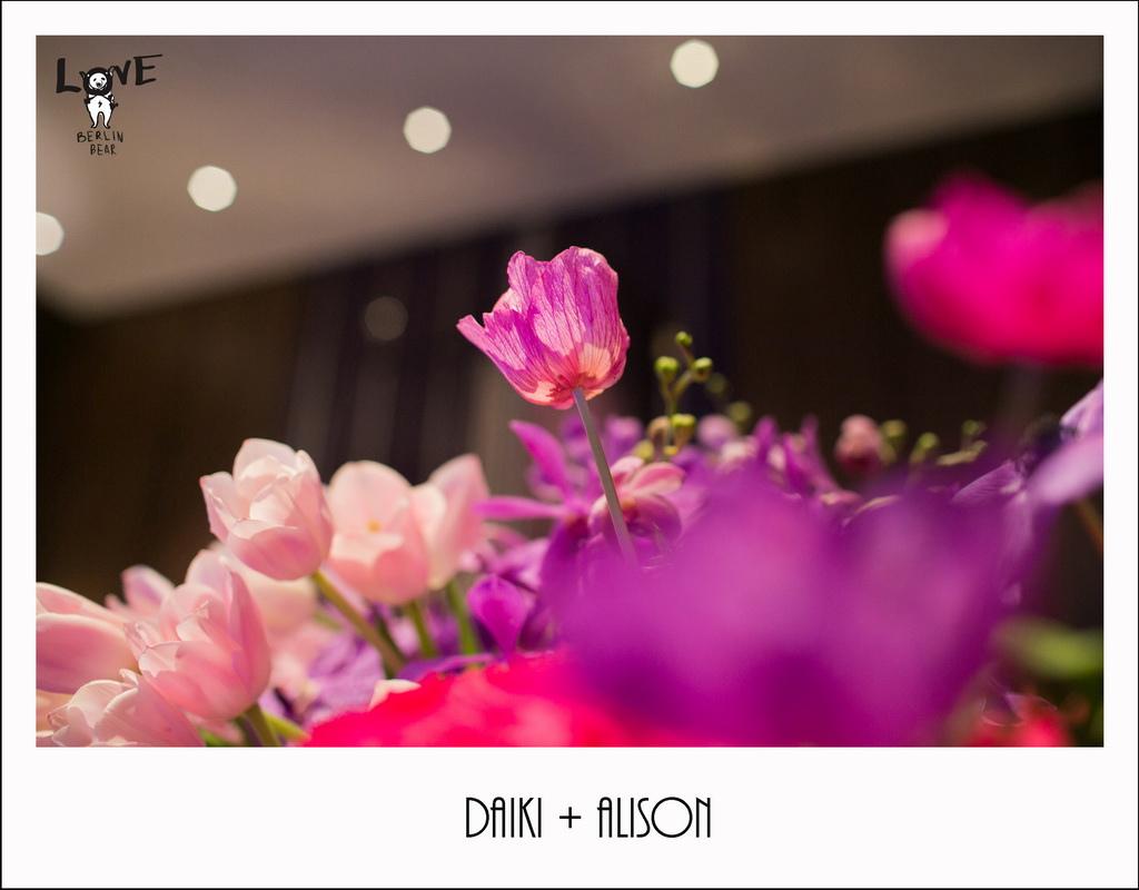 Daiki+Alison036.jpg