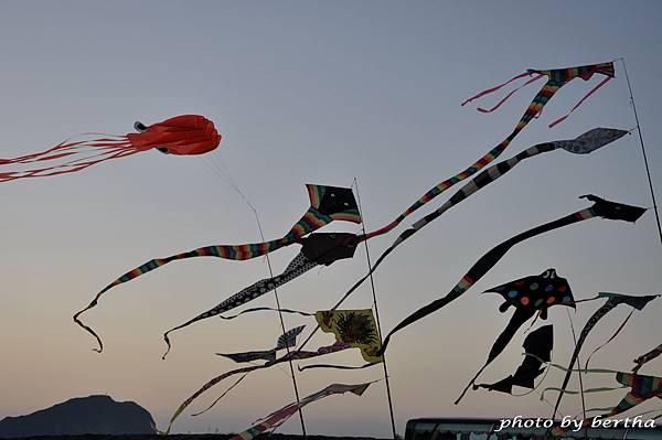For D90 一堆風箏.jpg