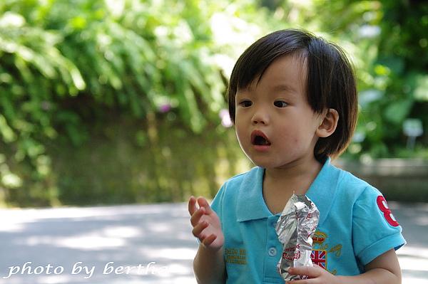 6月8日動物園 一豆-3.jpg