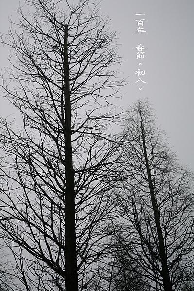 100年春節 初八.jpg