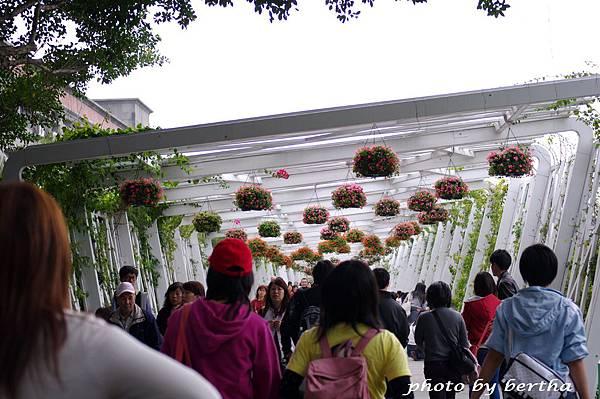 3月31日 花博新生公園-12.jpg