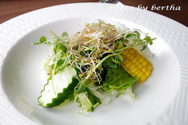 葡萄樹莊園餐點 生菜沙拉.jpg