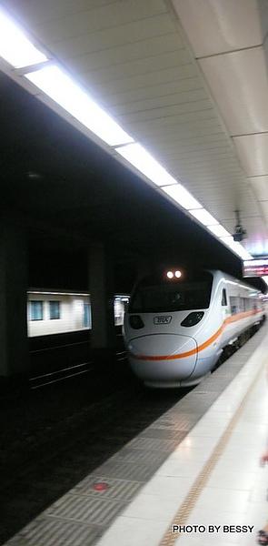 P1170269.JPG