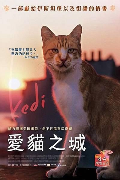 愛貓之城.jpg