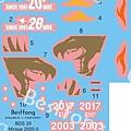 BDS29aMirage 2000-decal.jpg