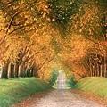 世界美景/德國的秋天