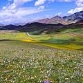 世界美景/西藏之美