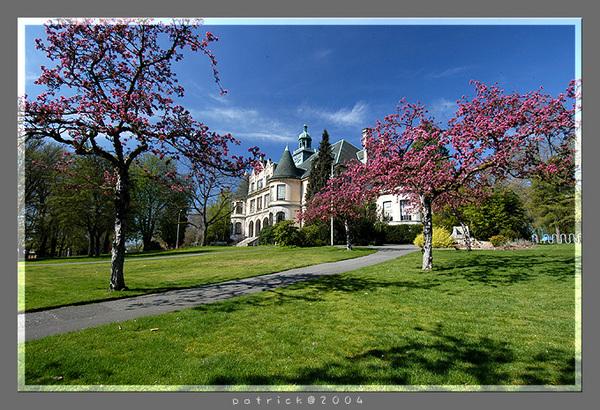 Seattle06