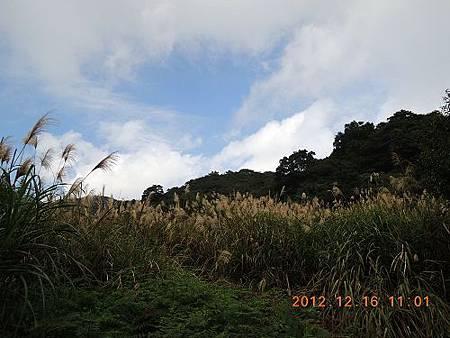 20121216 059_nEO_IMG.jpg