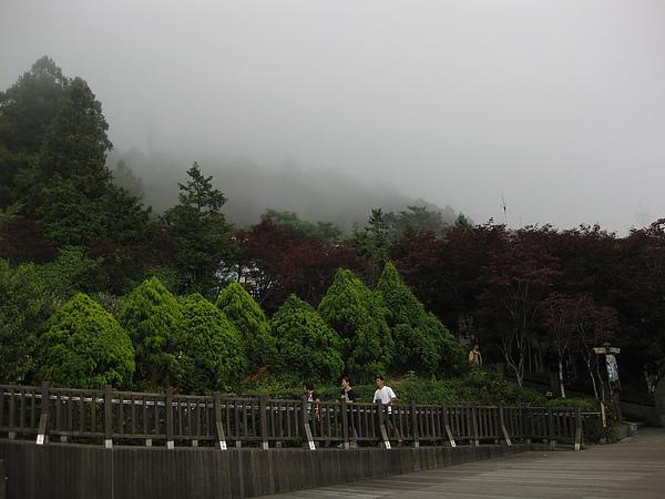 照片 250.JPG