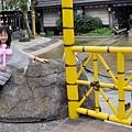 2014.5~六福村