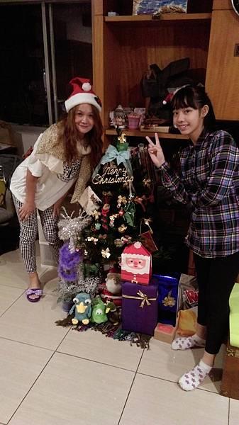 薇媽自己布置的聖誕樹唷