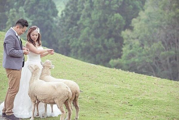 高雄自助婚紗攝影工作室129.jpg