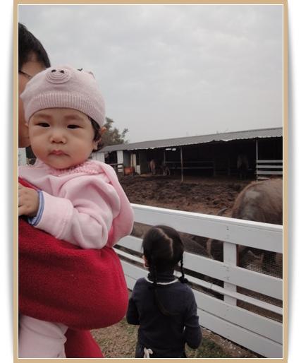 201103田園7.JPG