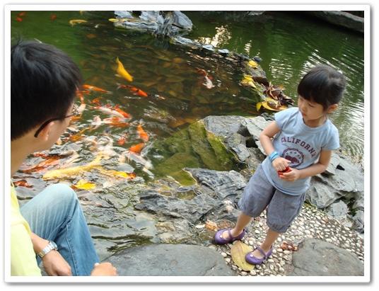 交大餵魚3.JPG