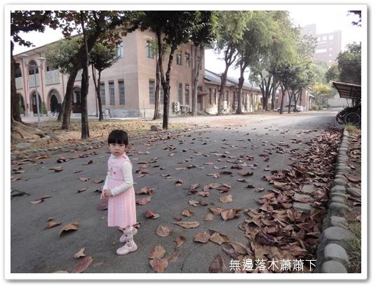 201001台南遊15.jpg