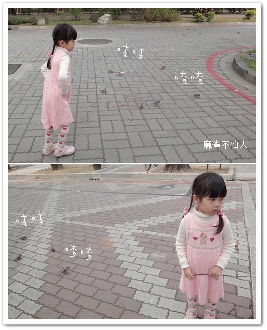 201001台南遊17.jpg