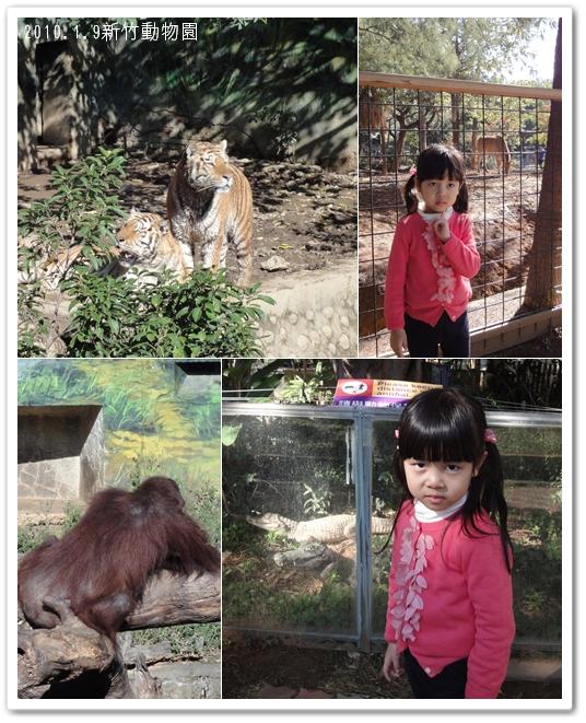 201001動物園01.jpg